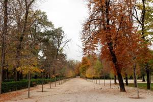 El-Retiro-Parque-Madri-3