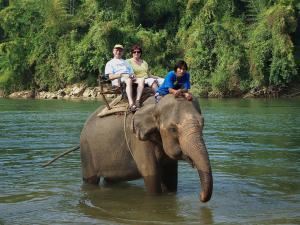 Passeio de Elefante na Tailandia