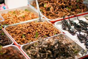 comida tailandesa : insetos