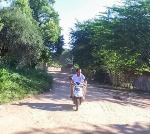 Templos de Bagan: Scooter