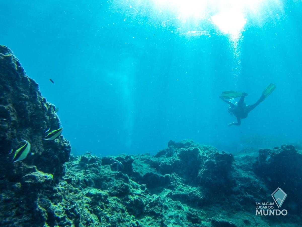 Ilhas Phi Phi Mergulho