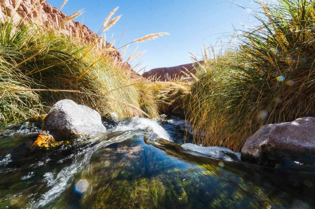 Termas de Puritama - Fluxo de Água