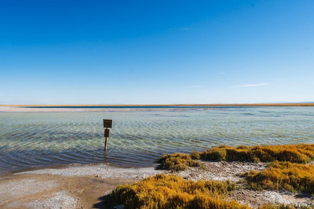 Deserto do Atacama Chile - Foto da Laguna Cejar das águas transparentes tirada de um dos mirantes