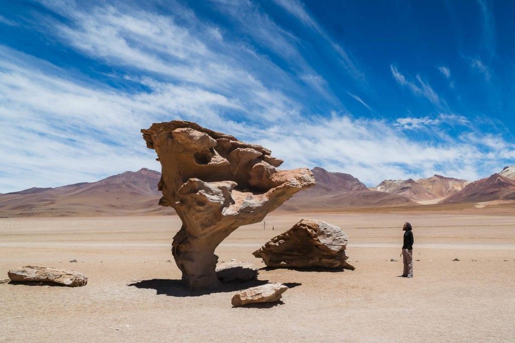 Salar de Uyuni - Foto de uma rocha que com ação dos ventos e erosão ficou parecendo uma árvore