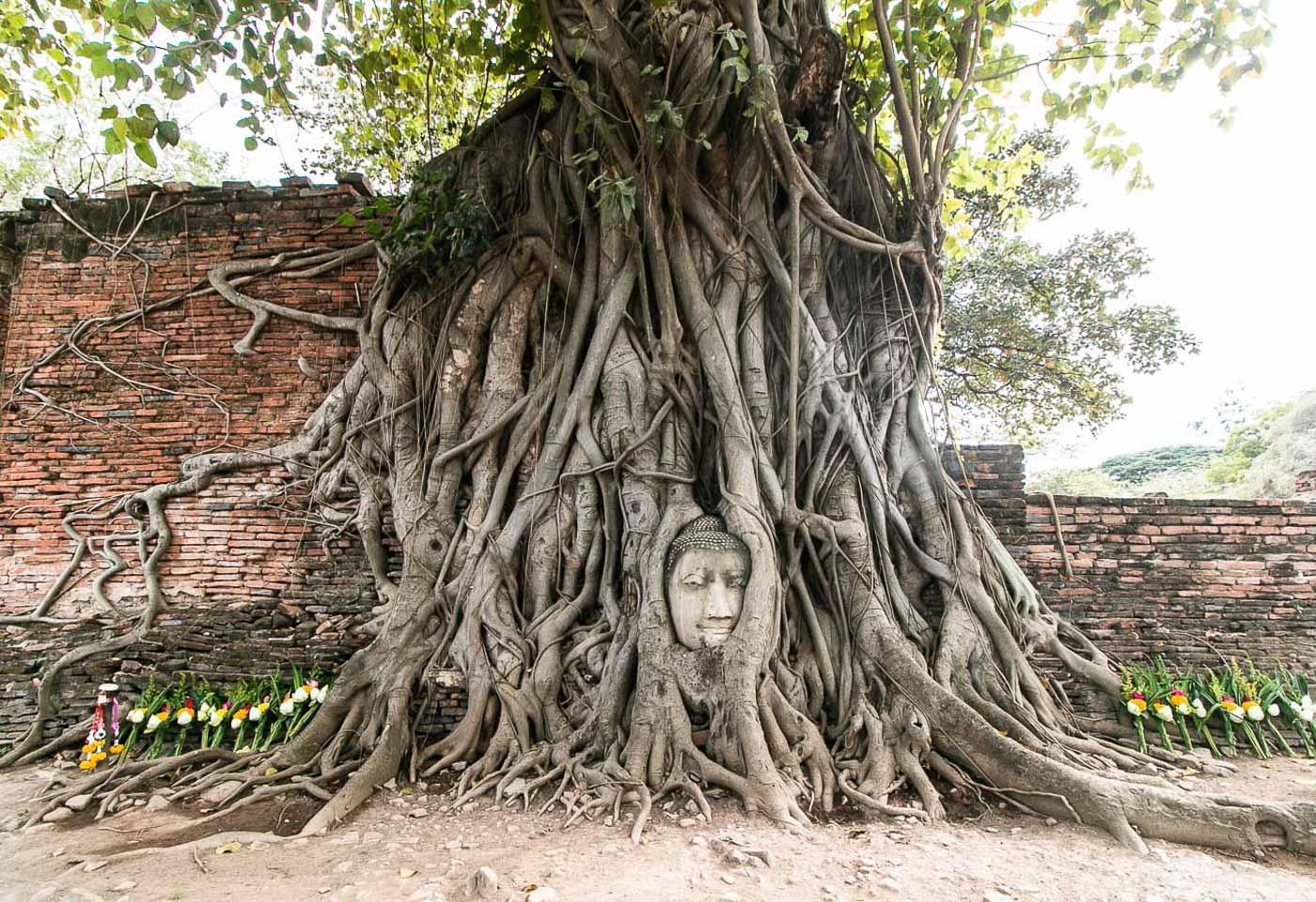 Turismo na Tailândia - Ayutthaya