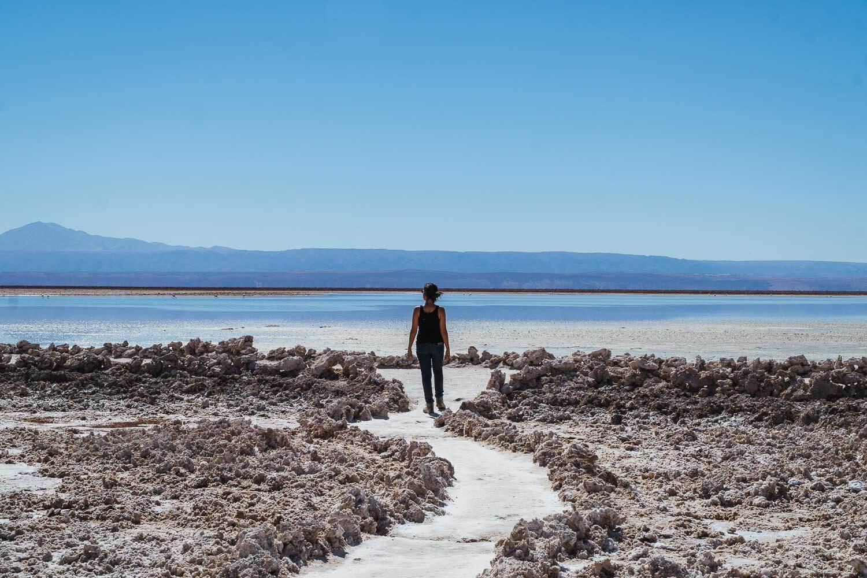 Dri andando pelo Salar de Atacama - Lagunas Altiplanicas Piedras Rojas Salar do Atacama Laguna Chaxa