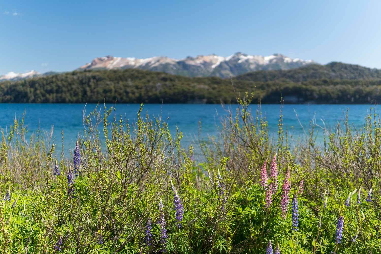 Foto do Lago Nahuel Huapi - O que fazer em Villa la Angostura
