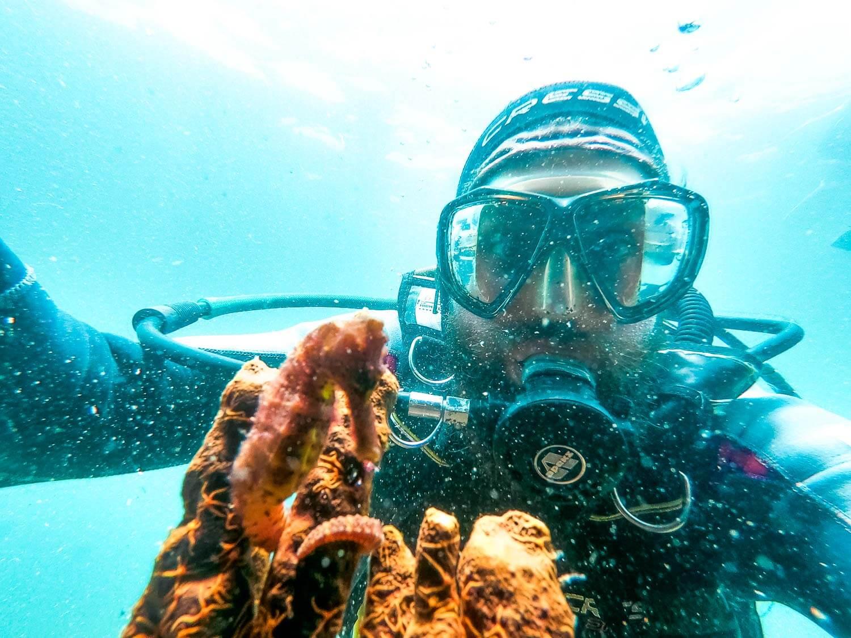 Mergulho em Arraial do Cabo - Selfie com cavalo marinho