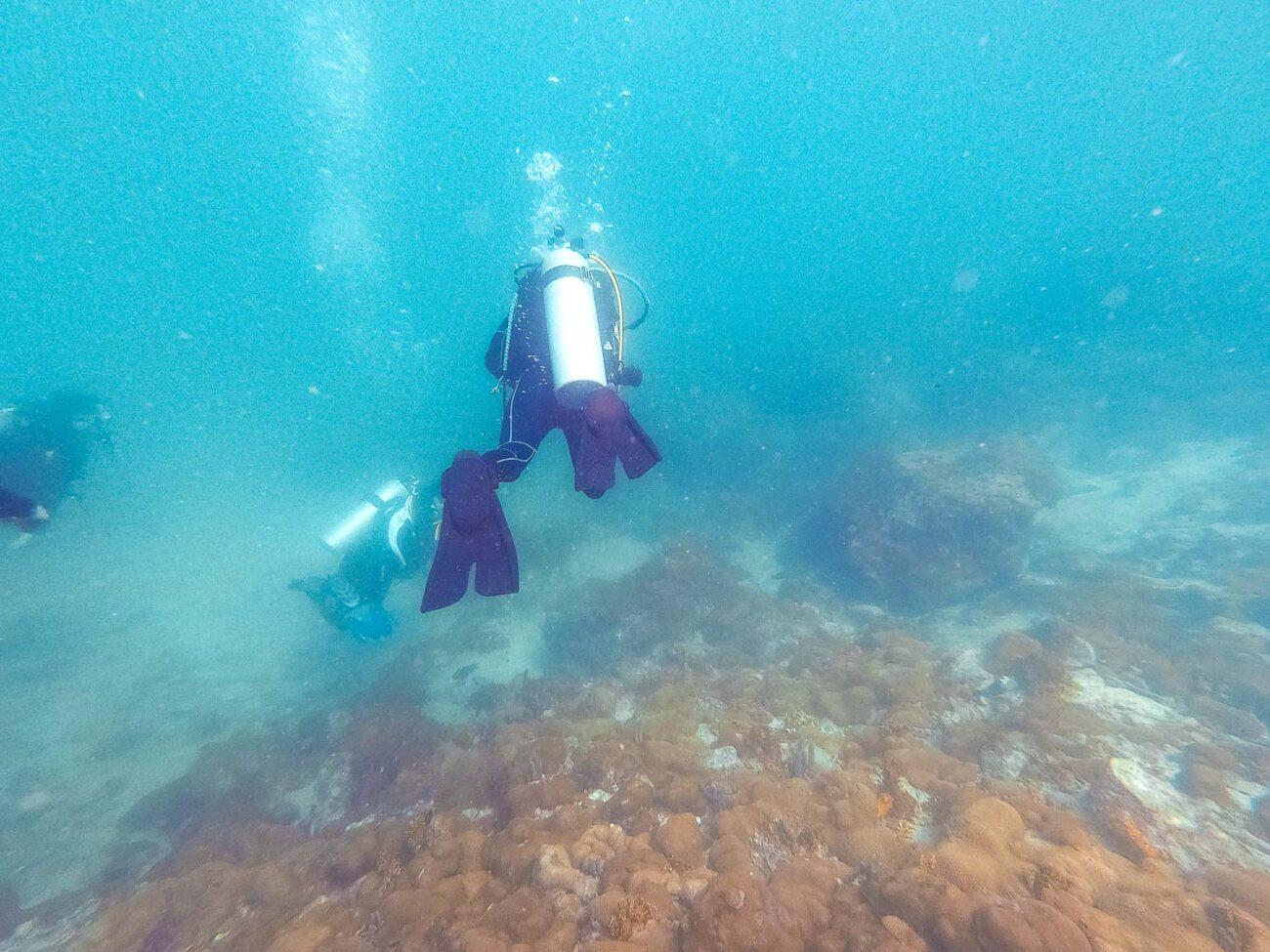 Mergulho em Arraial do Cabo - Grupo de mergulhadores em Arraial do Cabo